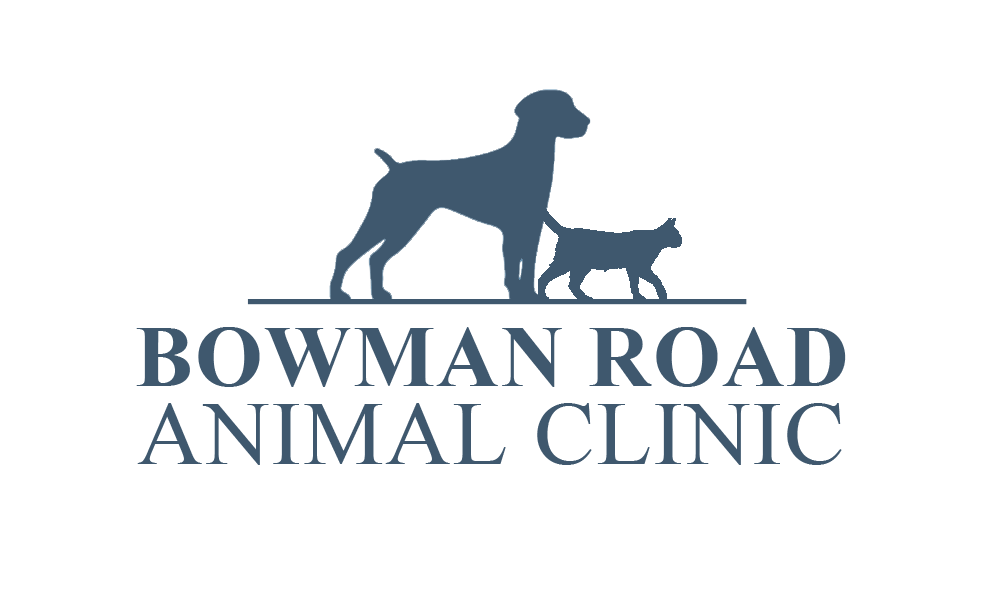 bowman road animal clinic