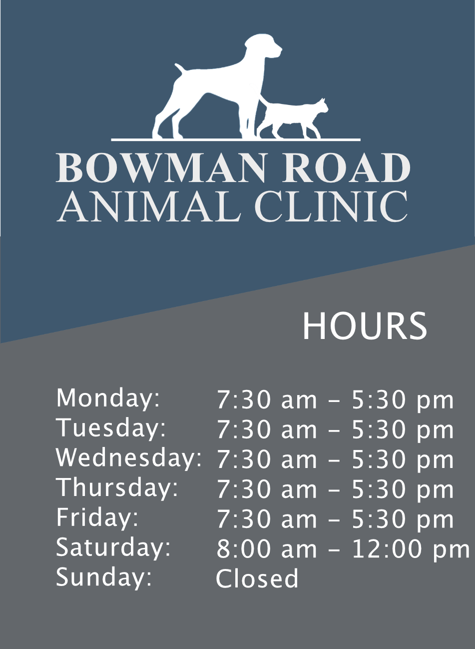 Bowman Road Animal Clinic | Little Rock Veterinarian
