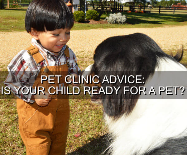 Pet Clinic Advice: Is Your Child Ready for a Pet?